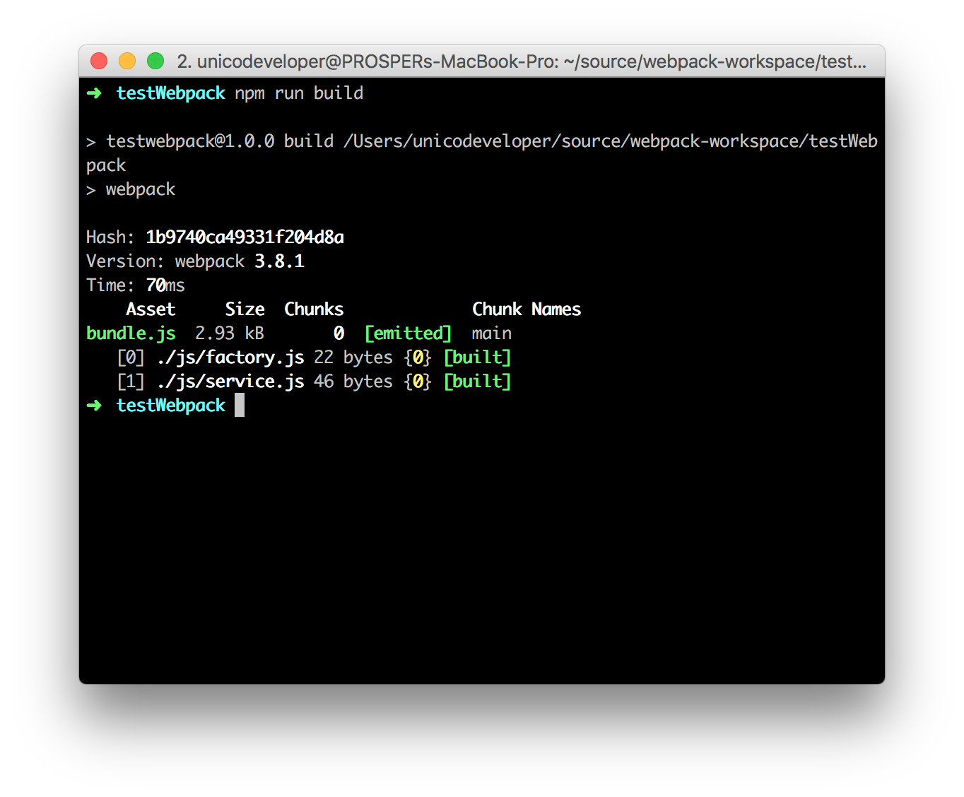 Webpack build
