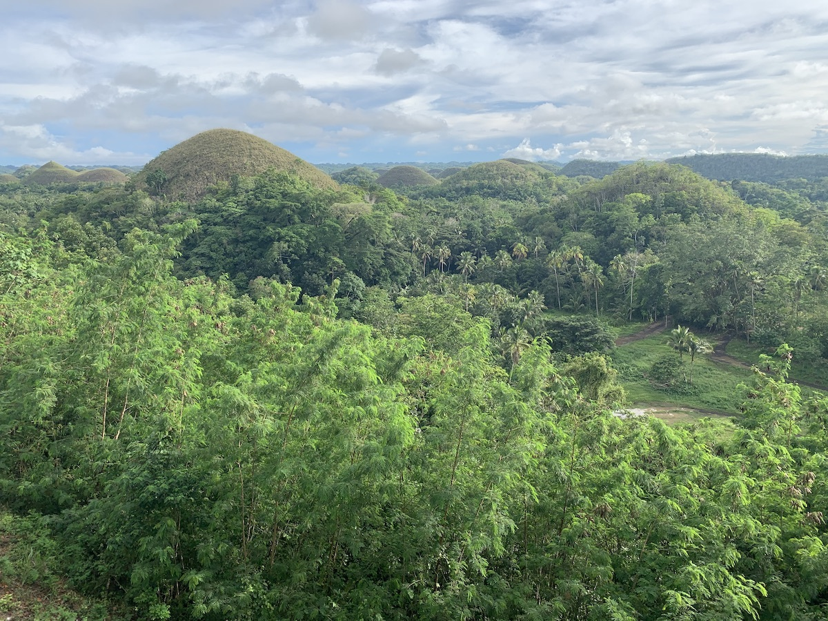 A lush tropical forest, with dome-shaped hills in the background. This photo contains Exif metadata - see if you can find the altitude at which this photo was taken!