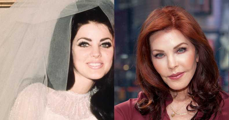 Priscilla Presley Plastic Surgery Disasters Purple Clover