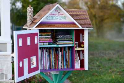 20 Adorable Little Free Libraries People Have Built Around Their Towns