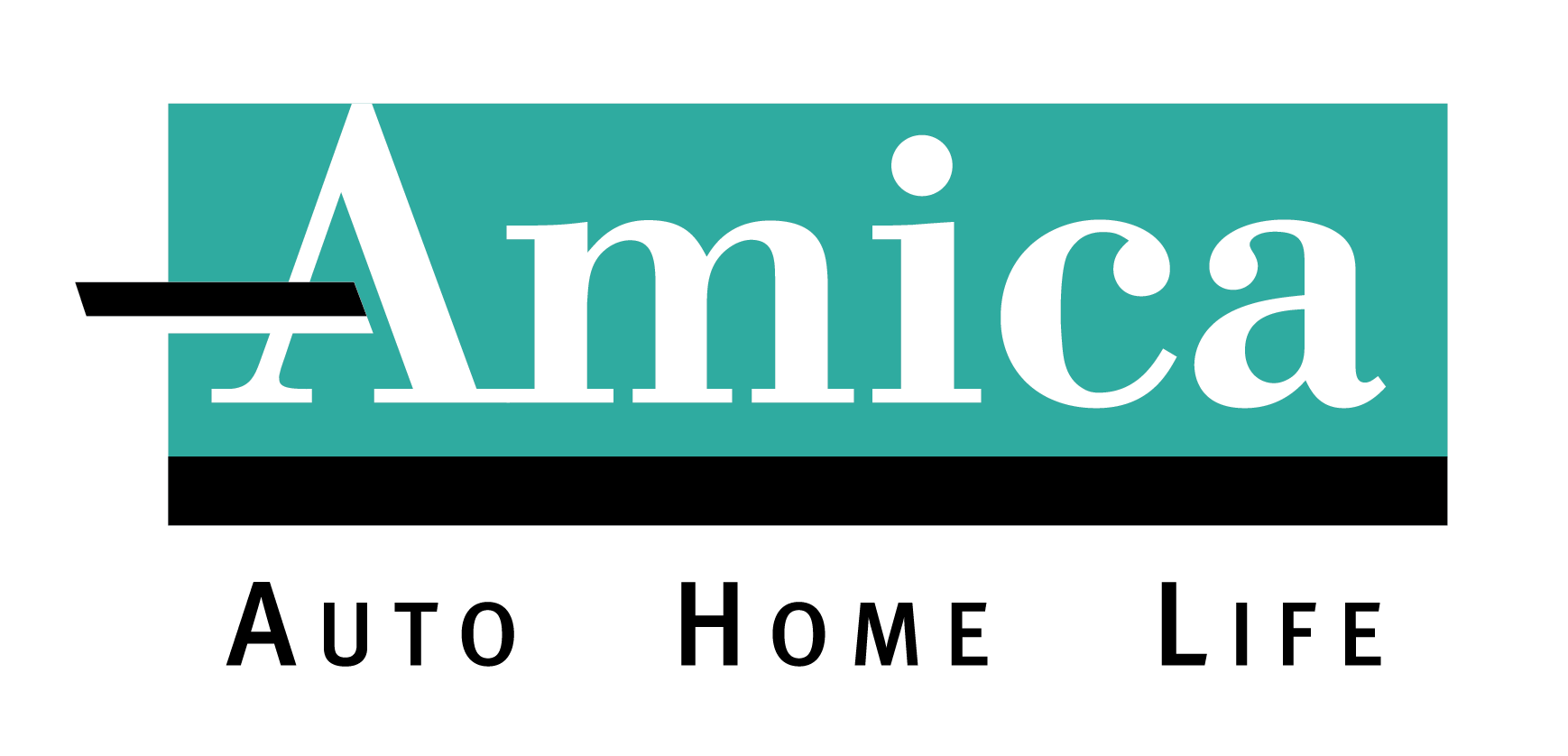 Color Amica Logo black AHL 2C