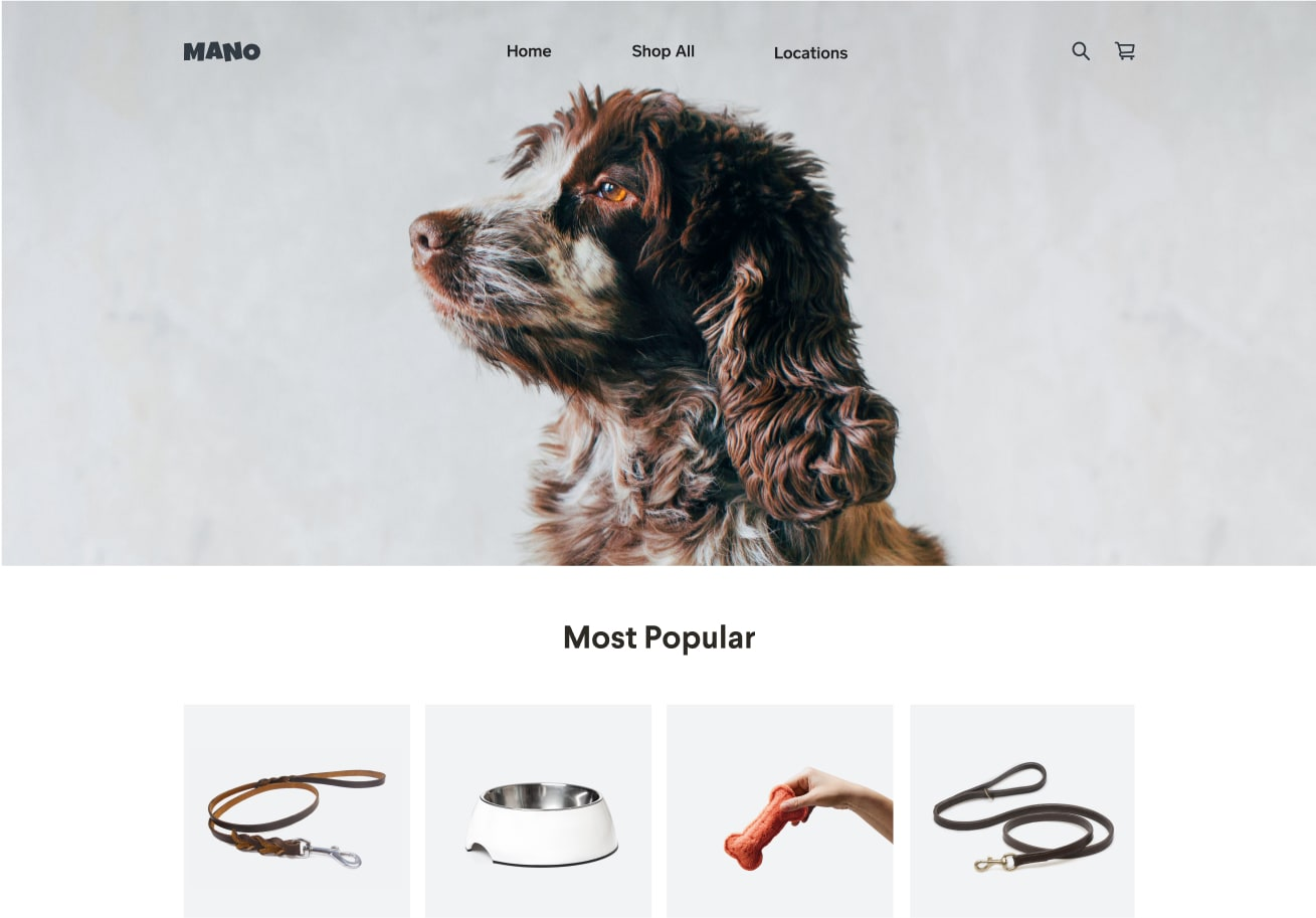 Website Templates Ecommerce Website Designs Square