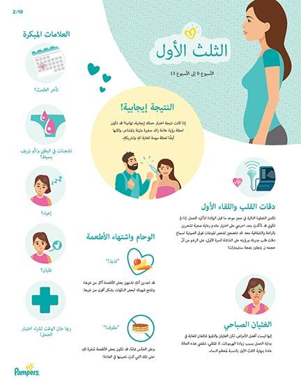 أهم مراحل الحمل