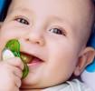 أفضل خمسة لهايات للطفل لعام 2021