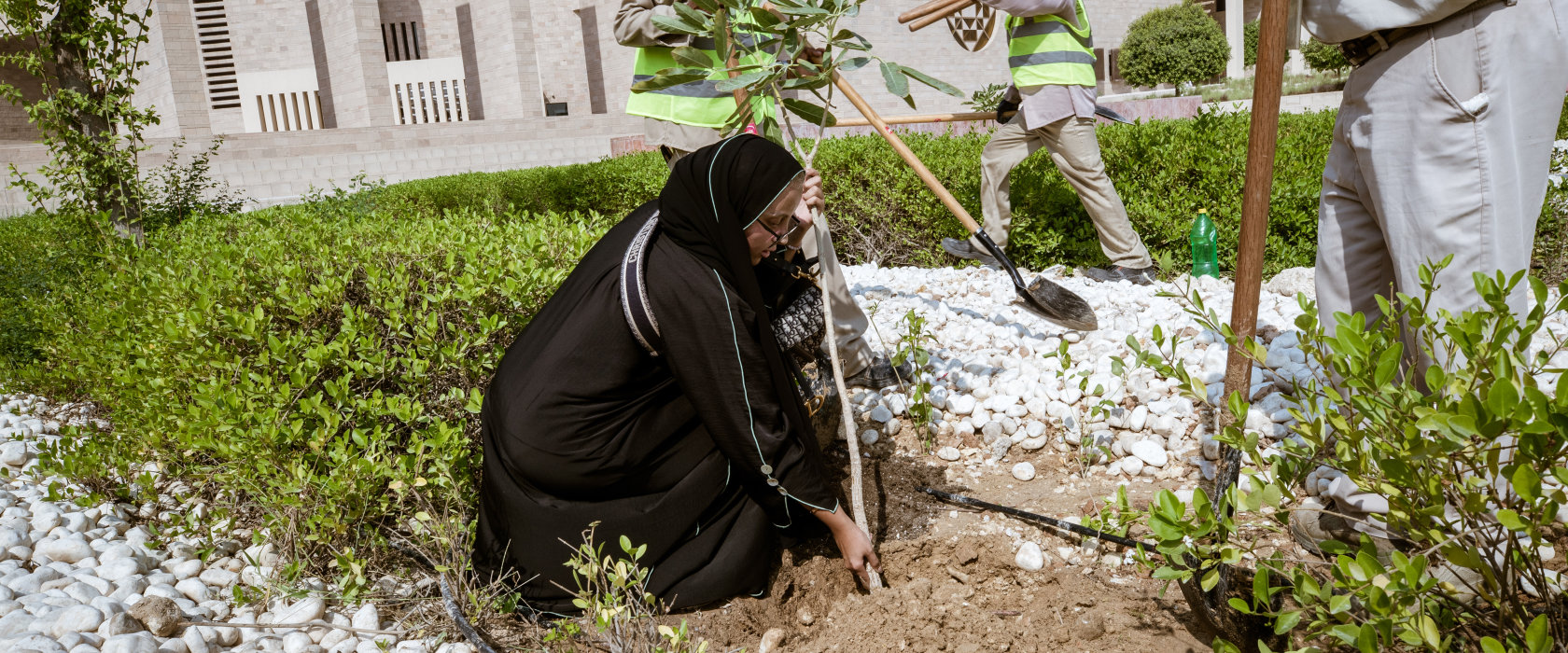 Qatar Sustainability Week: QF initiative aims to create Qatar's first urban forest