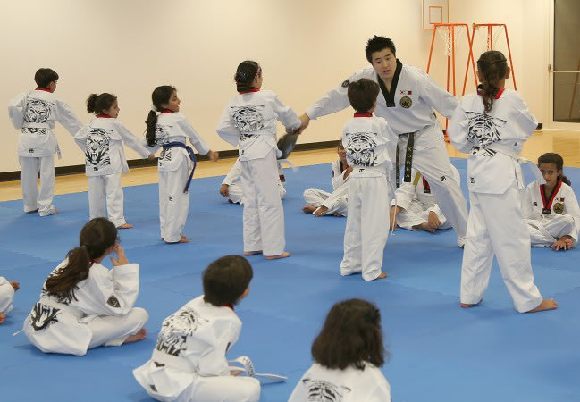 Taekwondo and Kickboxing Classes - Term 3