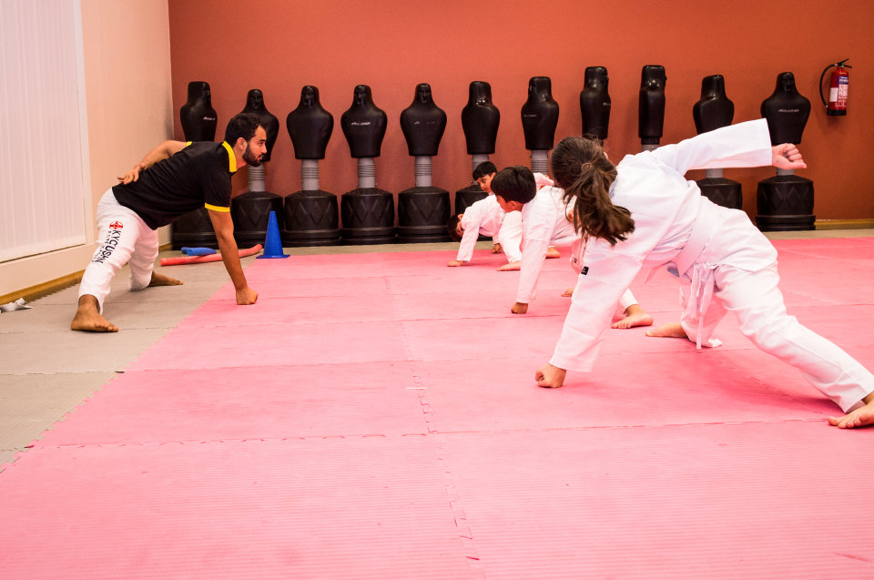 Karate Classes - Term 2