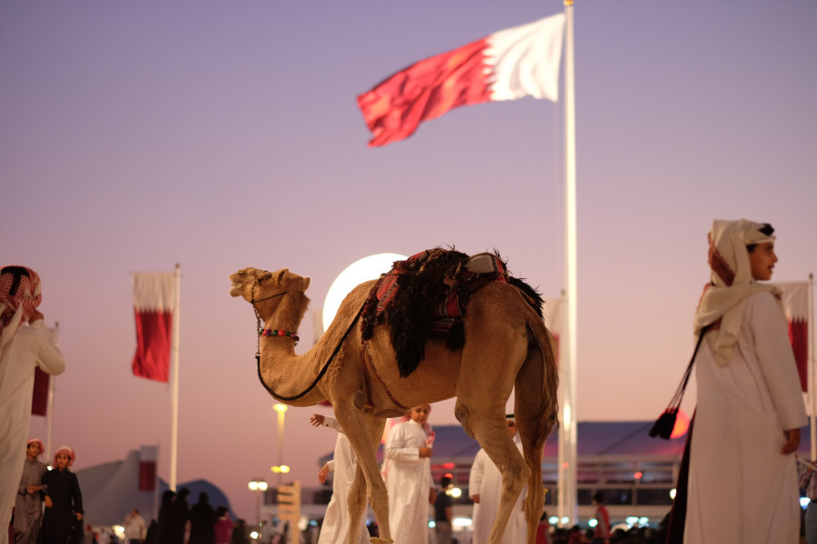 ABO041 - About Qatar - Camel Racing and Horse Riding