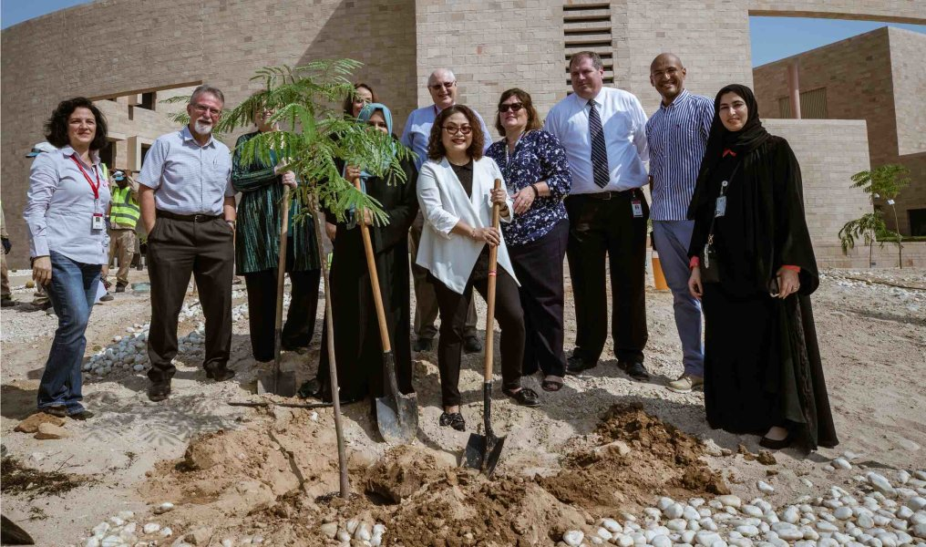 Park and Plant Initiative - 8