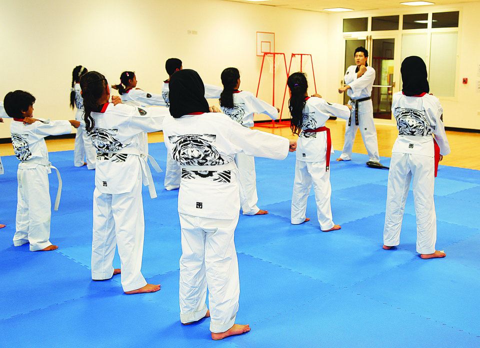 Kickboxing and Taekwondo Classes  - Term 2