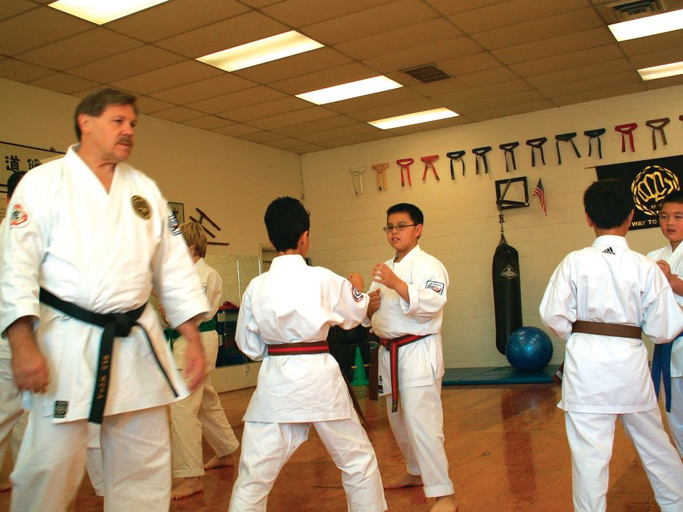 Karate Classes - Term 3
