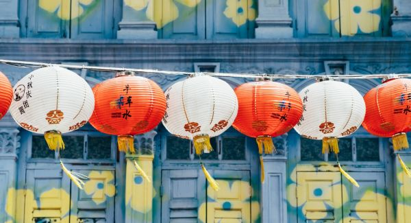 chinese lanterns in front of flowers