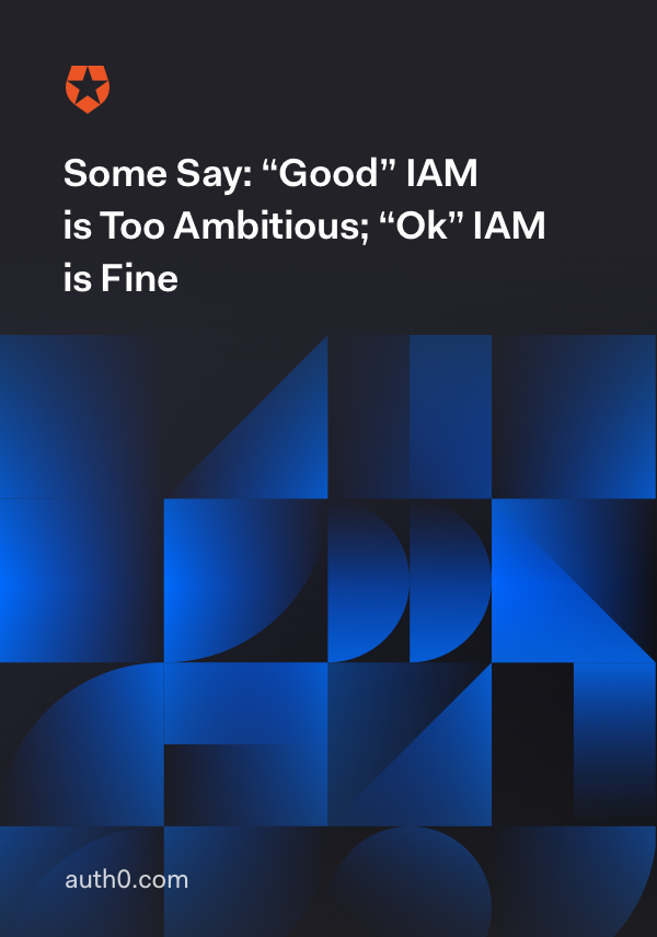Some Say: Good IAM is too ambitious, OK IAM is fine