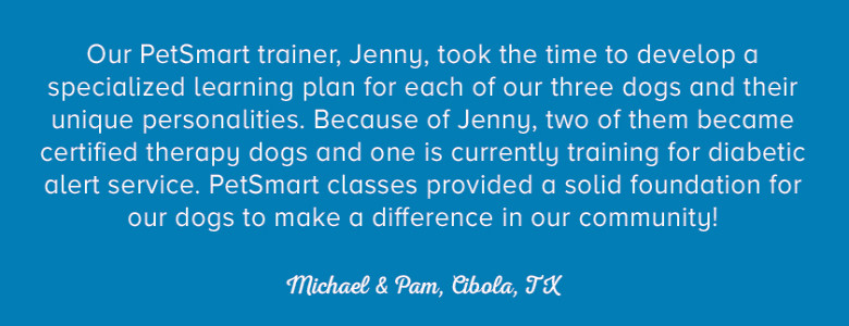 Pet Training Customer Quote