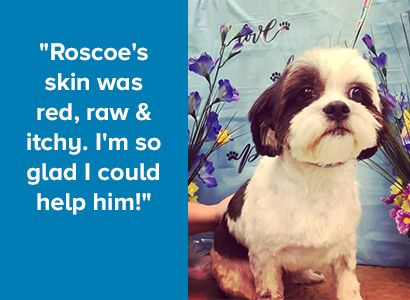 Roscoe's Story - Landing Page