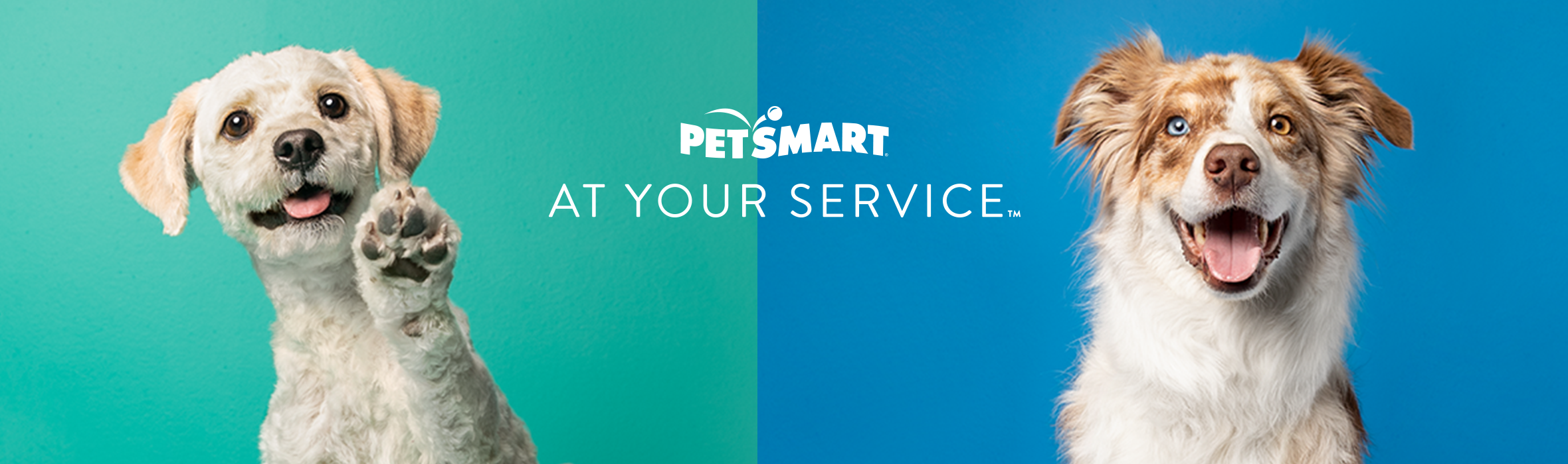 Pet Services For Dogs Cats Grooming Boarding More Petsmart