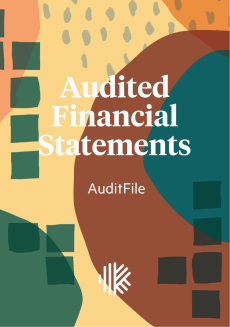 Cover Design - Audited Financial Statements by Auditfile