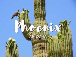 Phoenix, Arizona Economy Strong in Most Industries