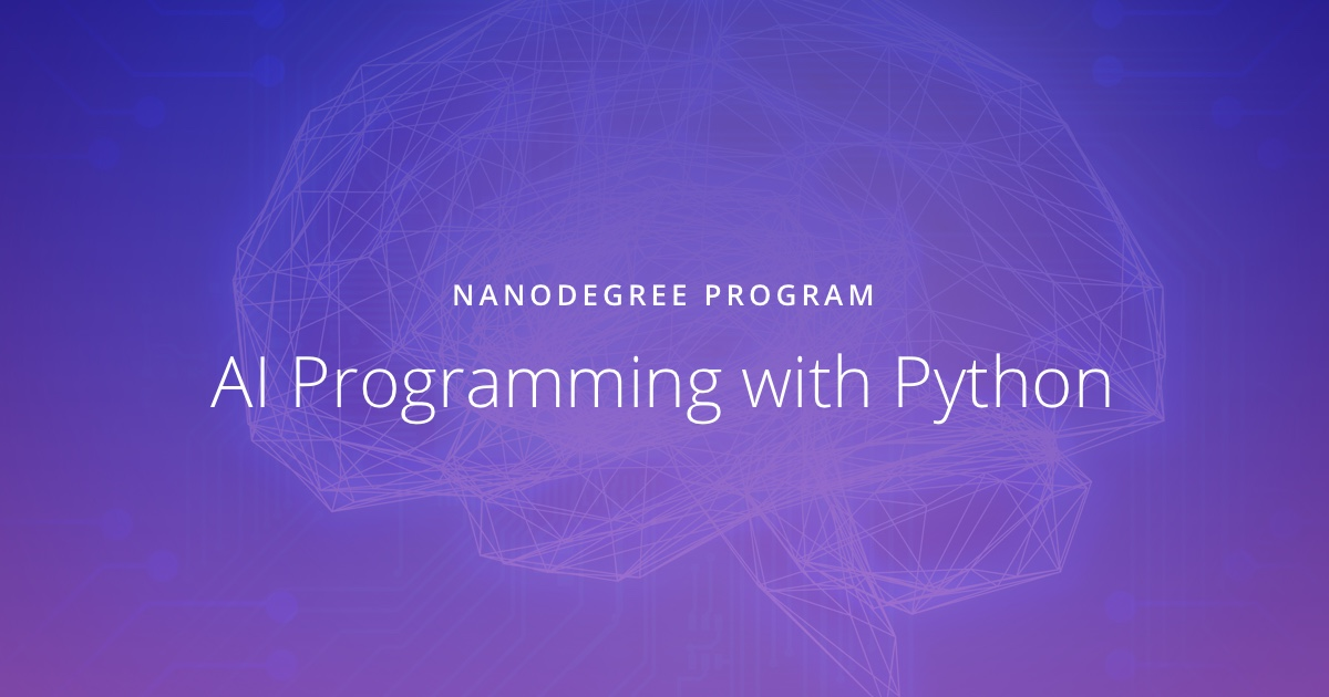 AI Programming with Python | Udacity