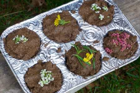nature school project- mud pies and mud ball critters