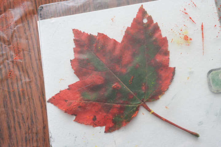 nature school project: printmaking with leaves — Sparkle Stories