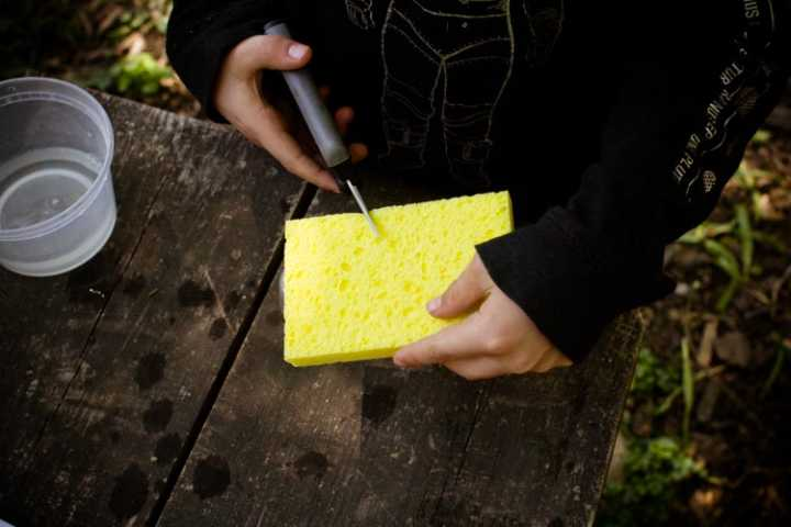 cutting the sponge