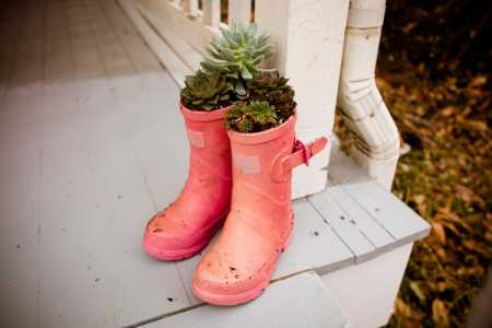 "sparkle craft: rainy boot ""hens and chicks"" planters"