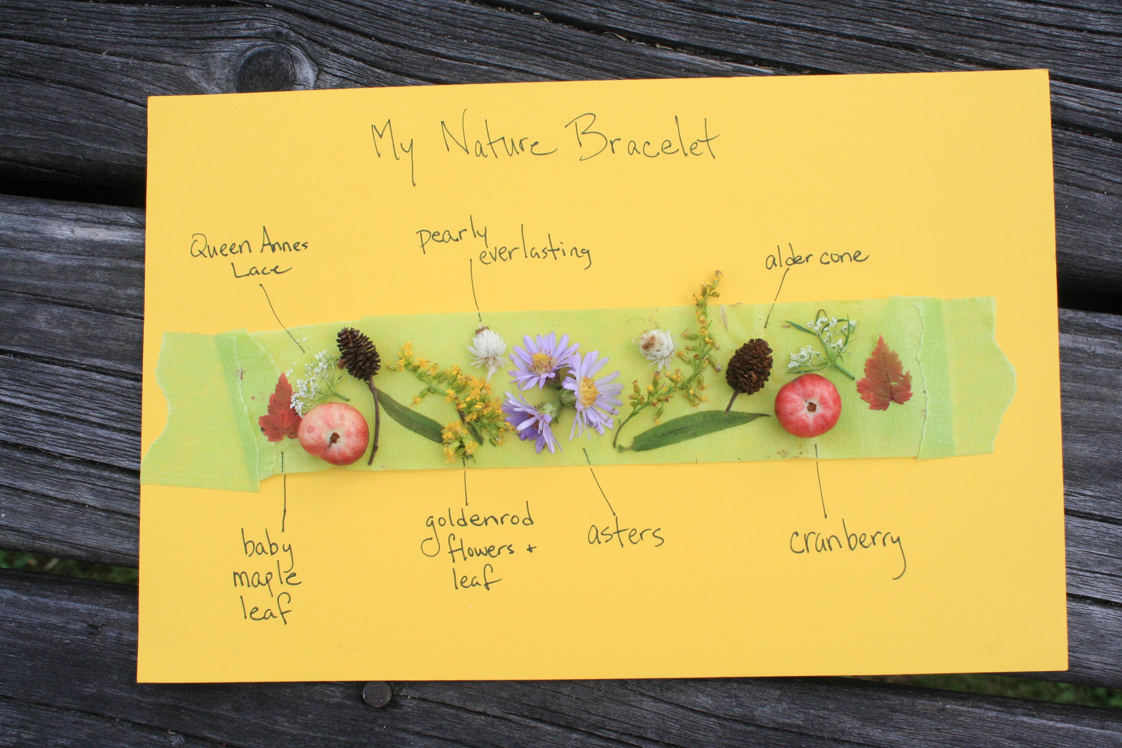 Nature School Project Autumn Bracelets