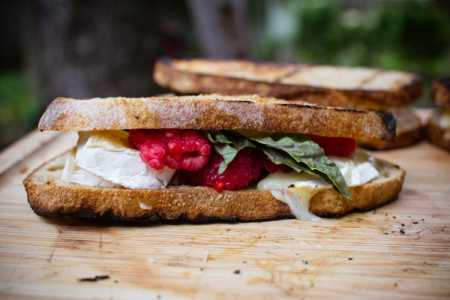 sparkle kitchen: campfire raspberry basil grilled cheese sandwiches