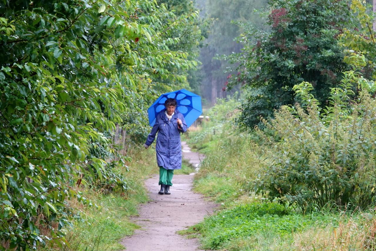 Cuaca musim panas yang basah dan sejuk di musim panas yang tinggi