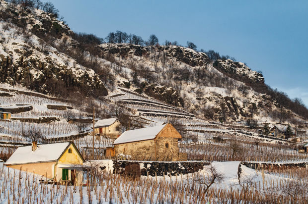 somlo-wine-region-winter