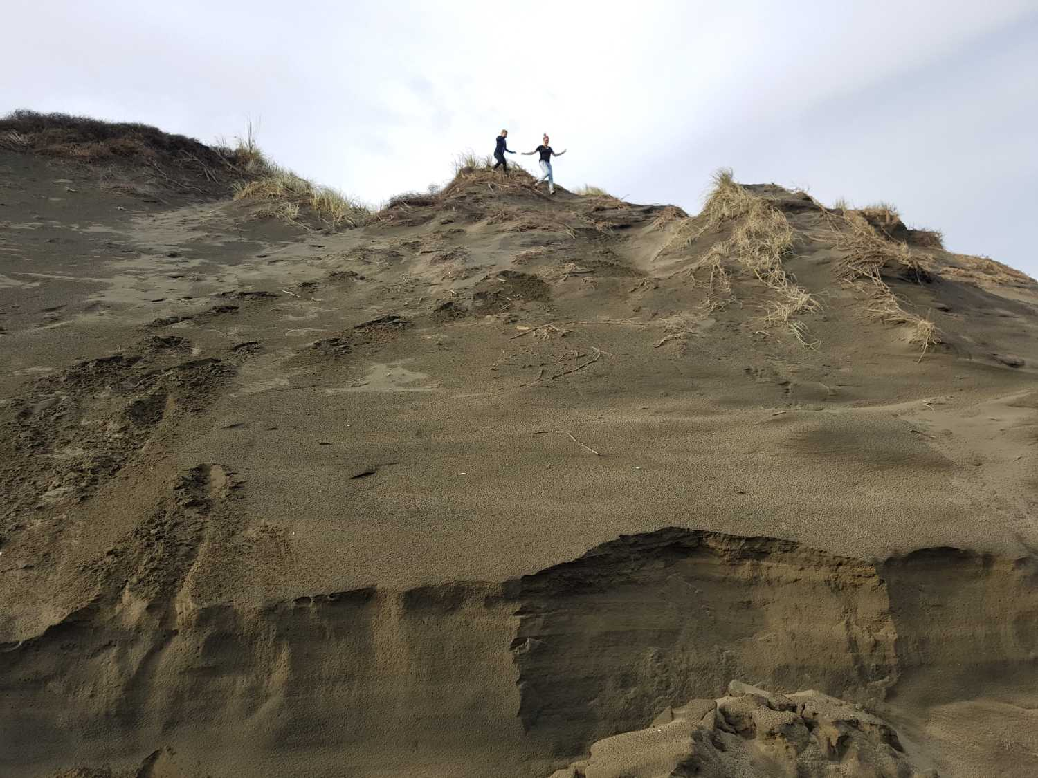 Tour group explores the Muriwai sand dunes