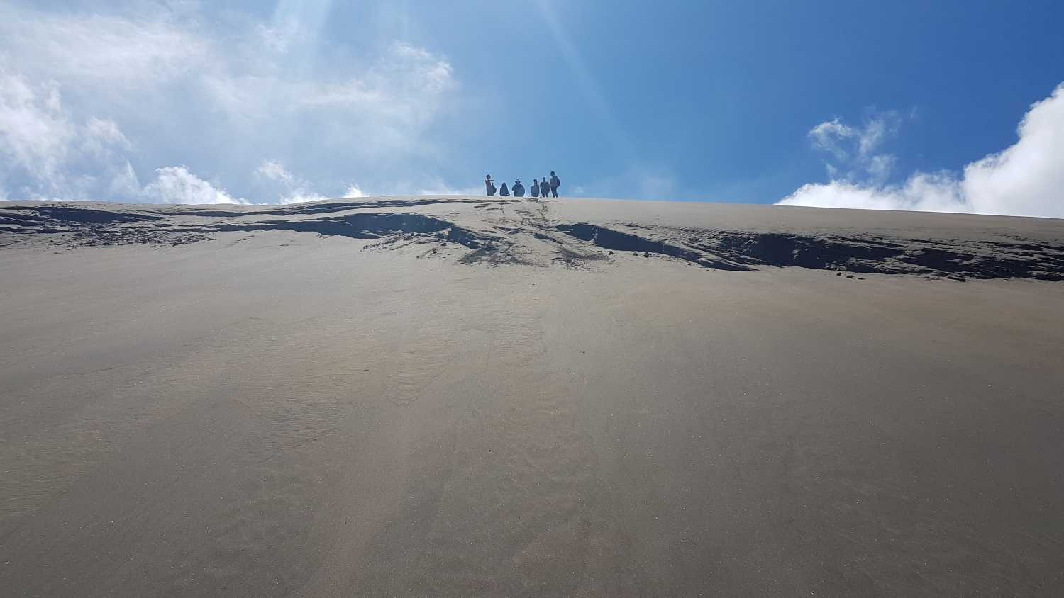 Tour group views Auckland atop the Bethells sand dunes