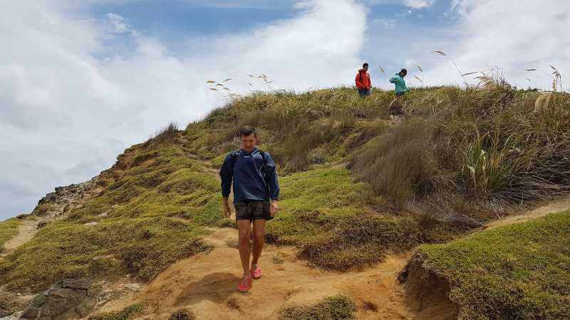Hiking the hilltops at Piha