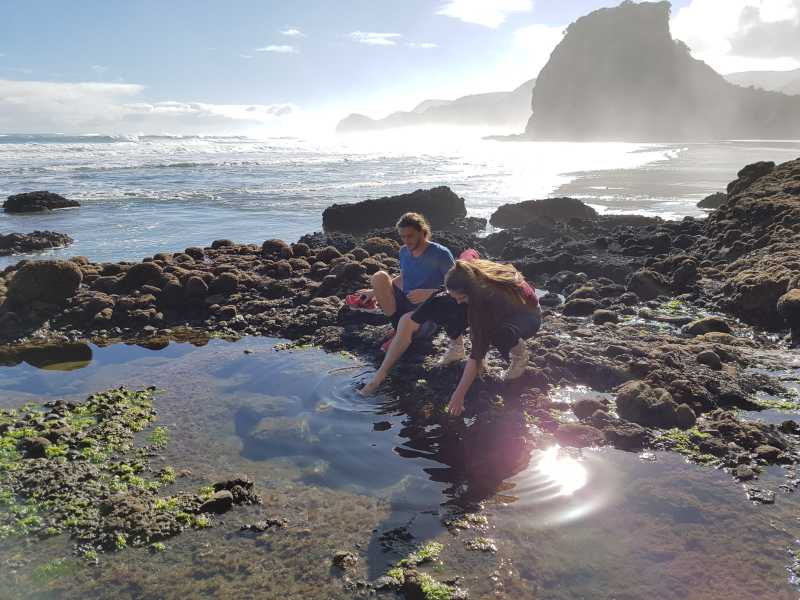 Putting our feet in the water at Piha Beach
