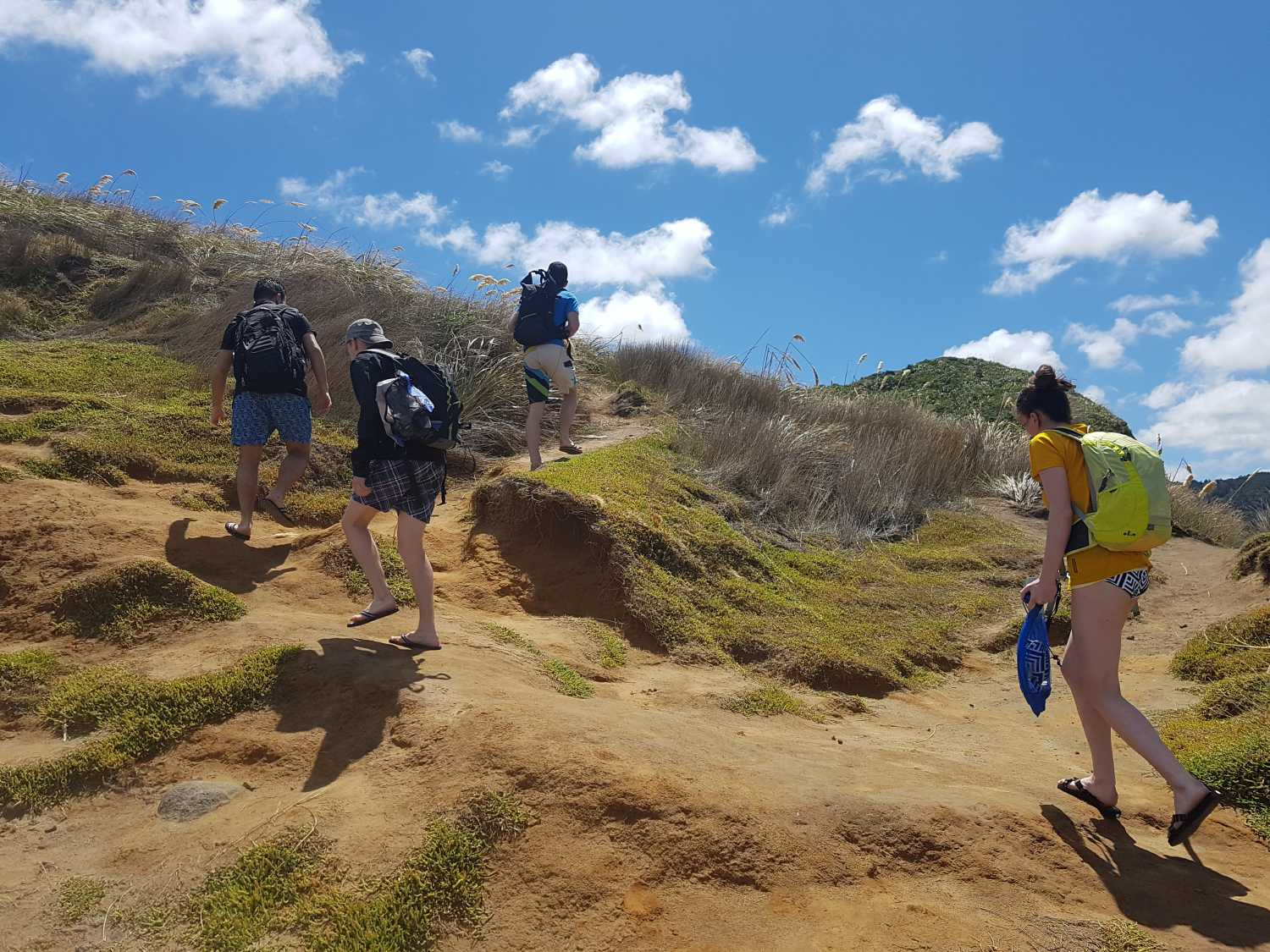 Group exploring the gap, at Piha Beach
