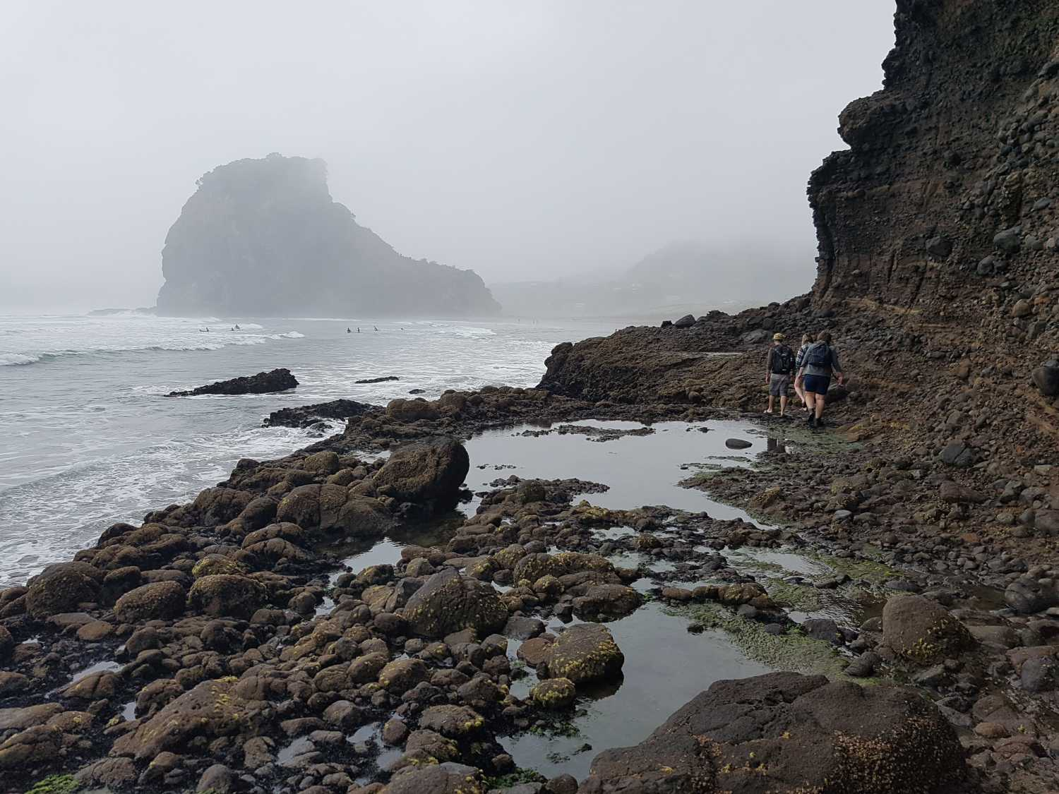 Piha's lion rock obscured by mist