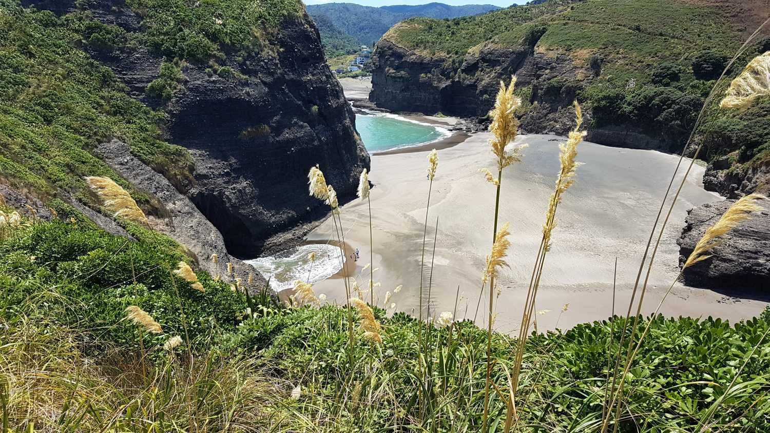 Piha beach, perfect in summer