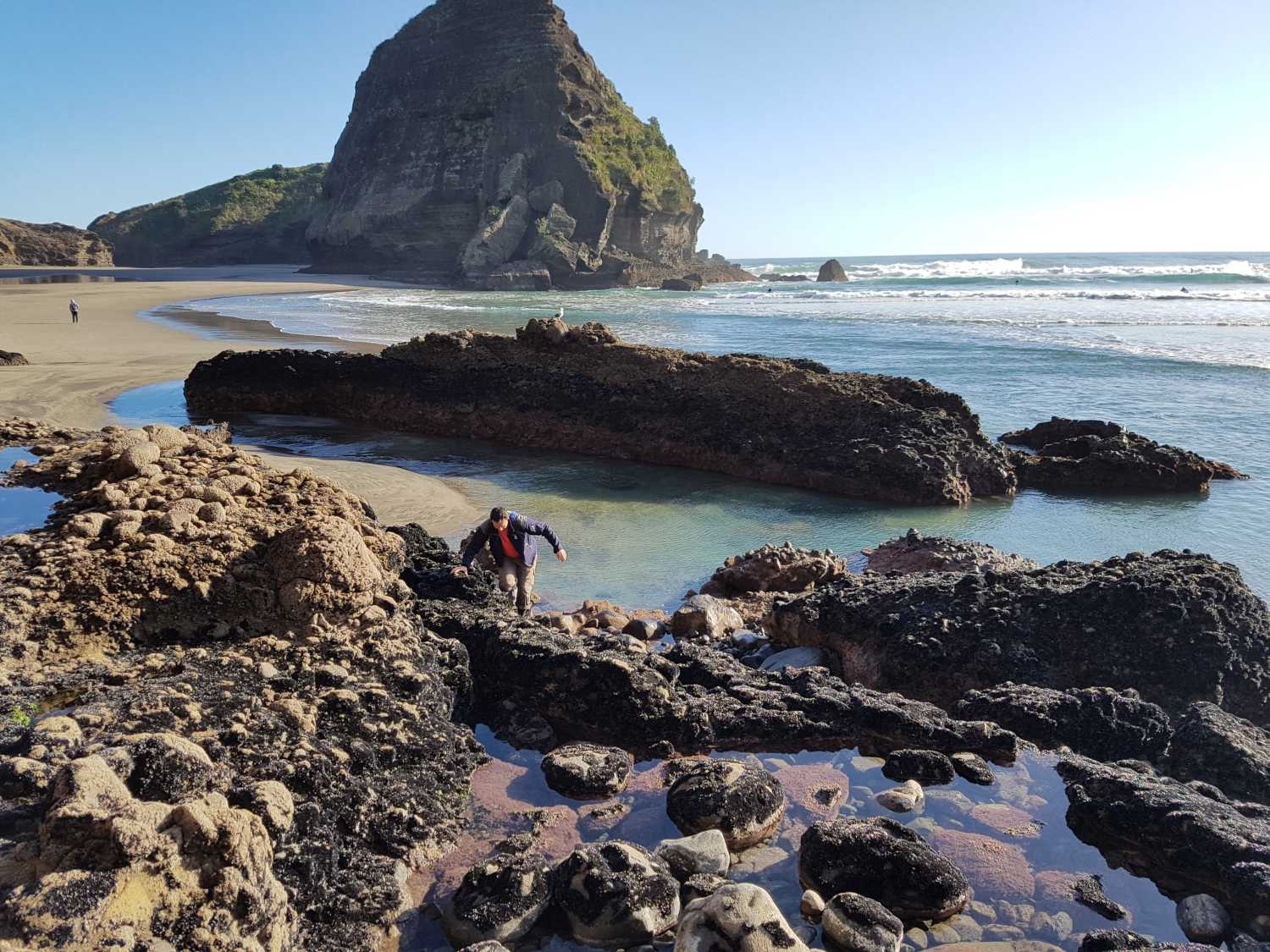 Tour group explores rock pools at Piha Beach