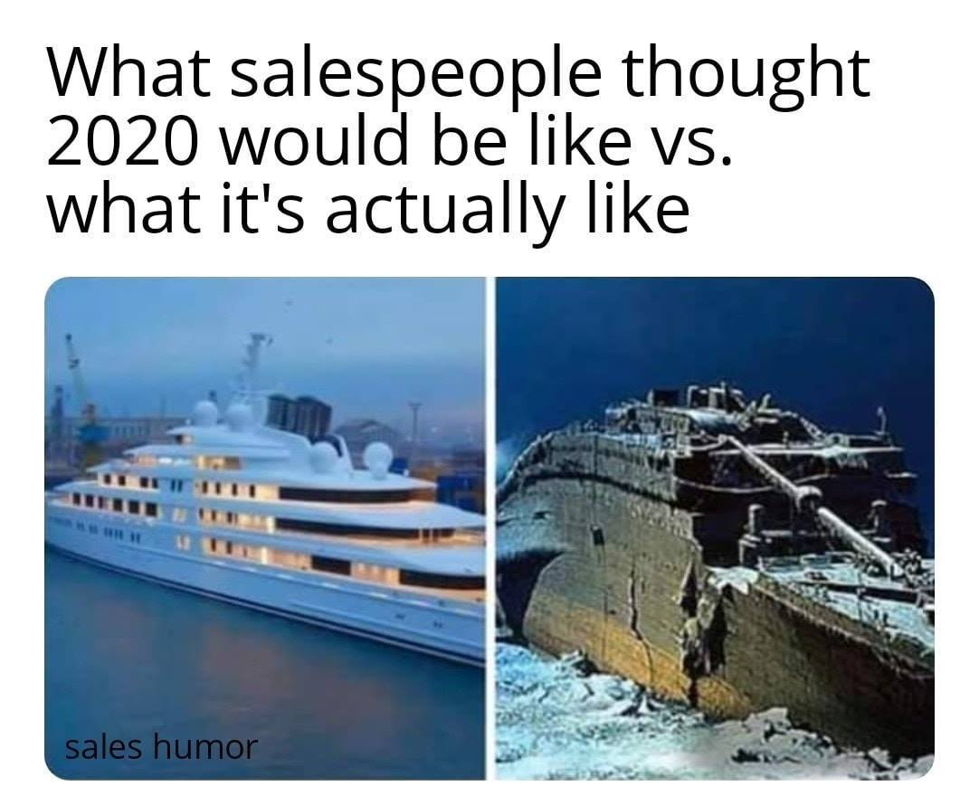 Dooly Sales Meme 20 - sales in 2020 reality vs what they thought