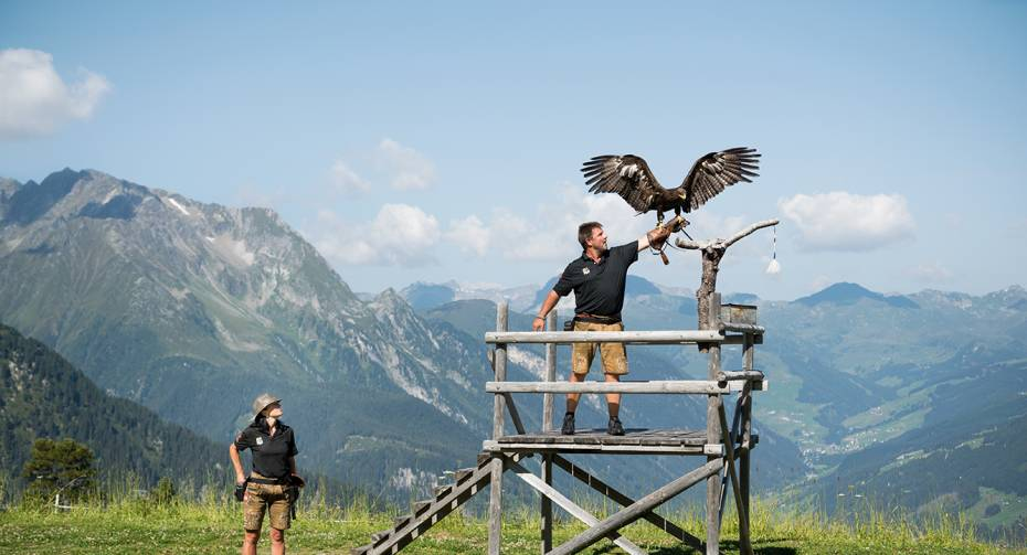Eagle Ticket
