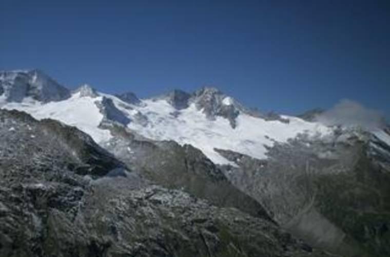 Alpenrose 1875m - Zemmgrund
