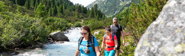 Top 7 Summer Highlights in Zillertal