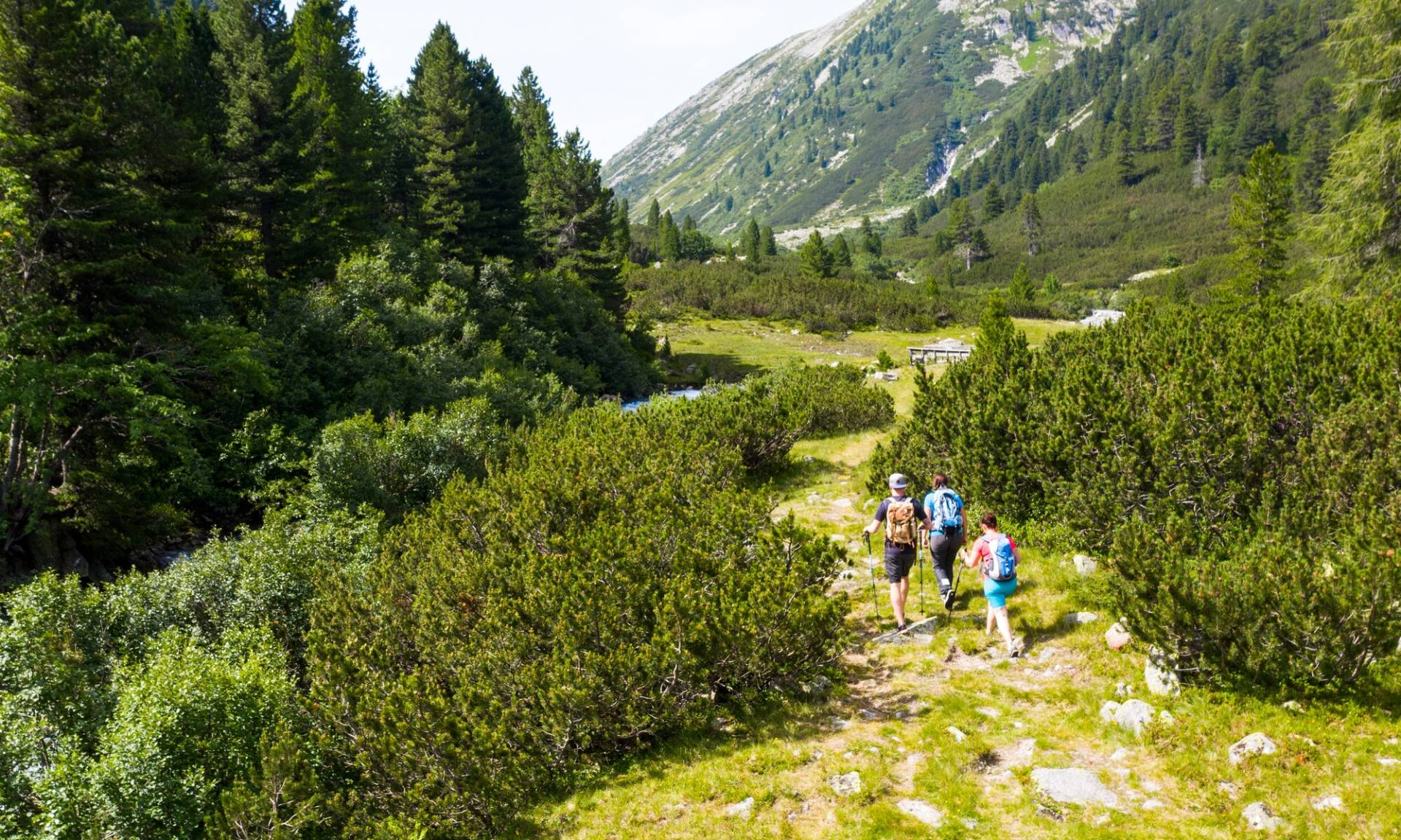 Persons hiking in the nature park