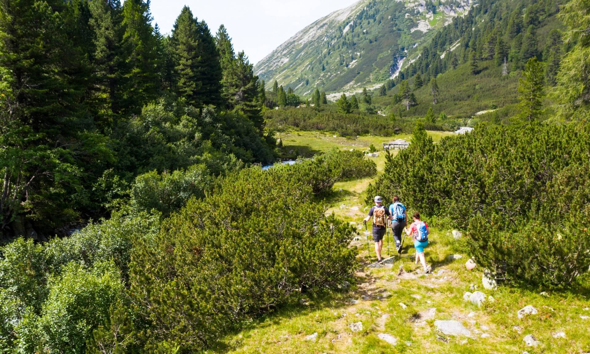 Menschen beim Wandern Naturpark