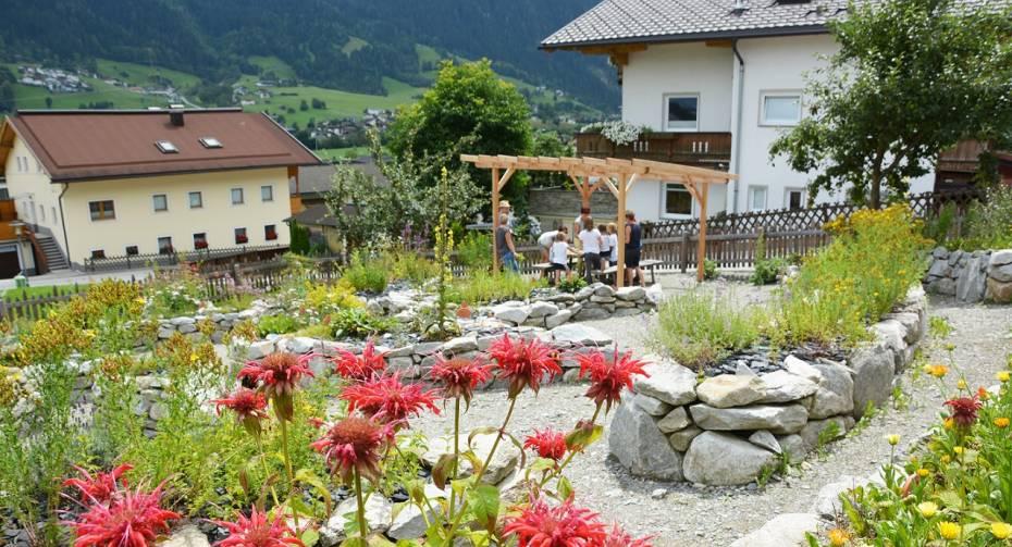 Herb garden in Hippach
