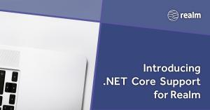 Dot net core support social