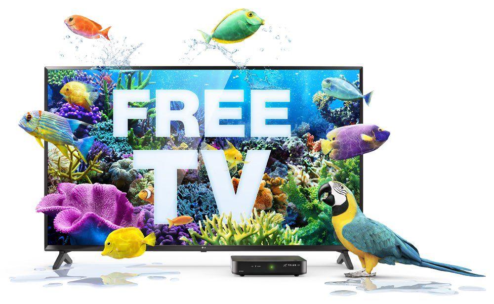 free-4k-hdr-tv-retina