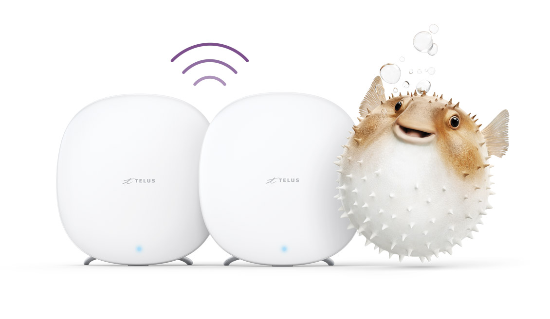 The best home Wi-Fi coverage - Boost Wi-fi Range Extender