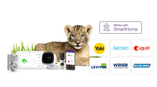 Works With Program SmartHome Security